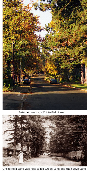 Cricketfield Lane, then and now