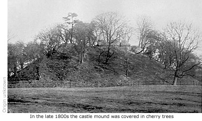 Castle mound covered in cherry trees
